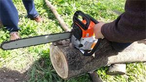 Máy cưa xích giúp khai thác gỗ chuyên nghiệp