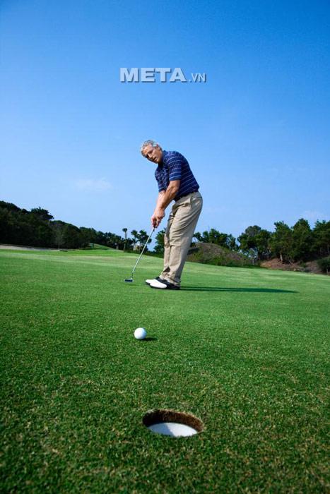 Đứng vuông góc với đường đi của bóng khi tập Putting