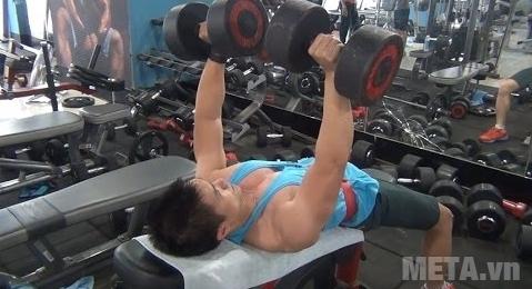 Có thể nằm lên ghế tập tạ tay giúp cơ bắp tay to khỏe hơn.